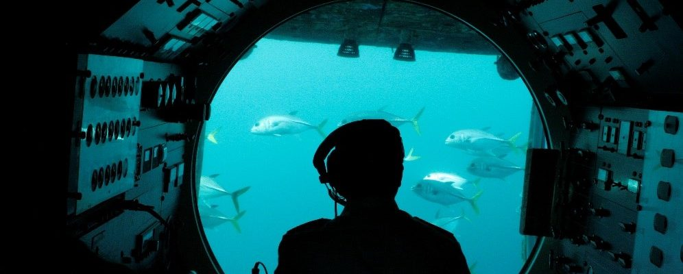 person in submarine looking underwater